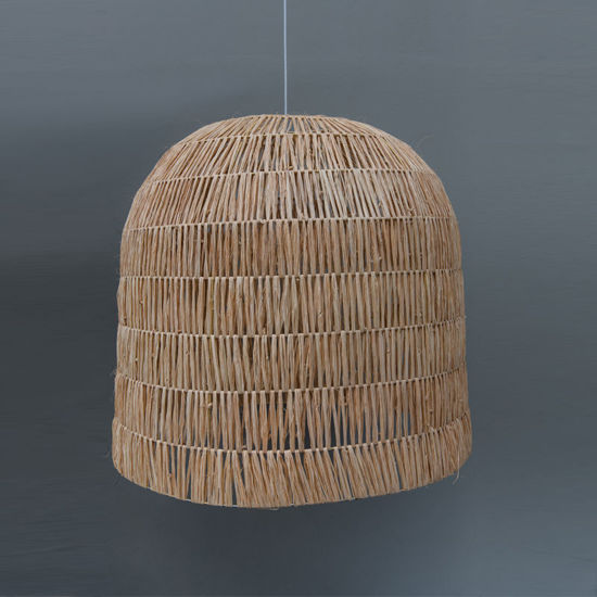 The Large Dome Light